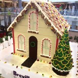 Myer Gingerbread House